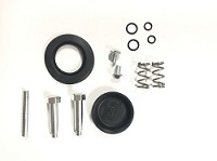 Birel Front Caliper Rebuild Kit- CLEARANCE